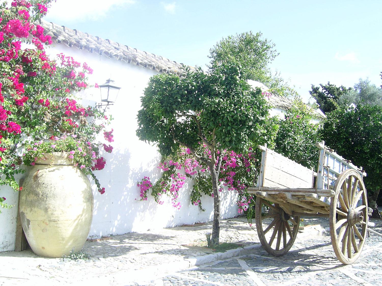 Hacienda La Peñuela